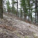 Denuded Excavated Hillside