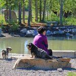 dog park whitefish pond