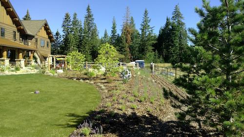 Home Farm Landscape Design
